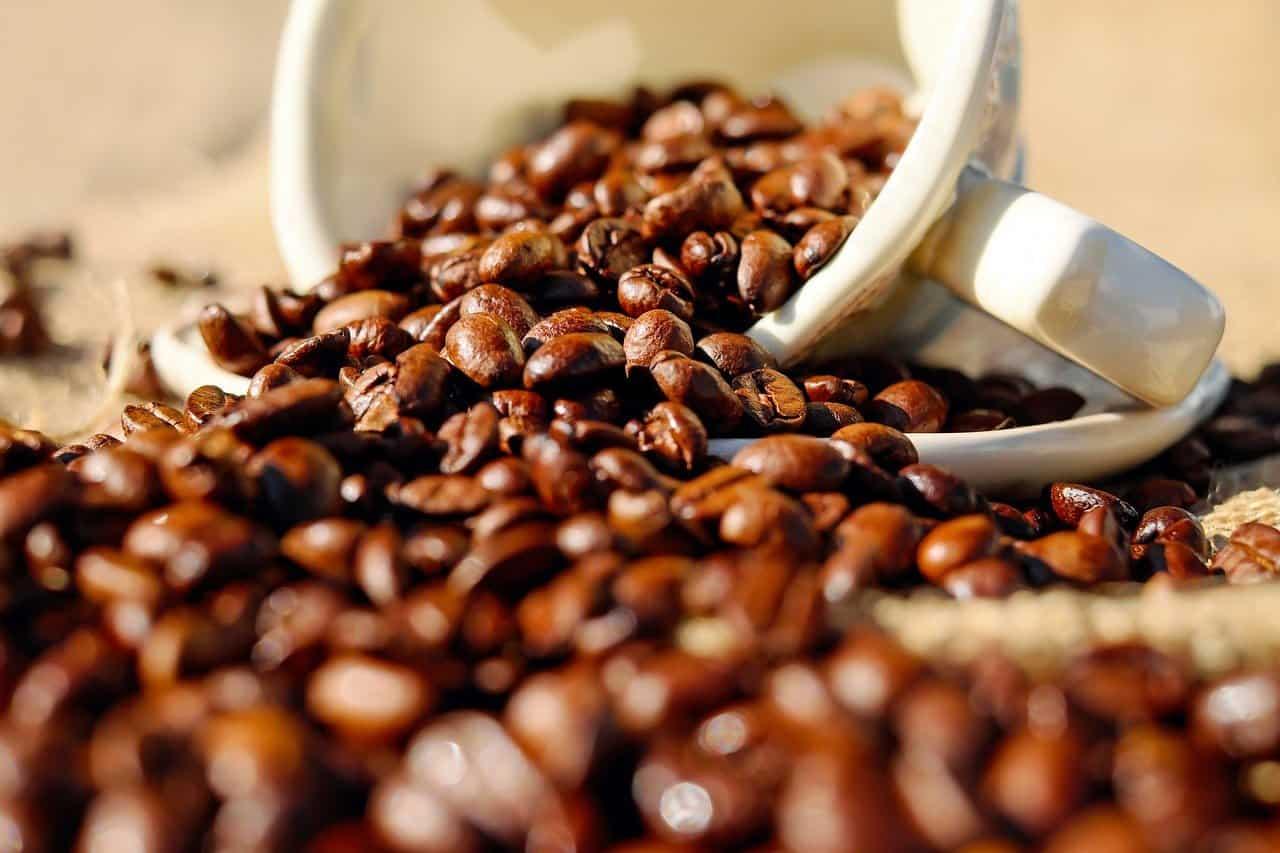 Elogio al caffè, alleato del nostro cervello