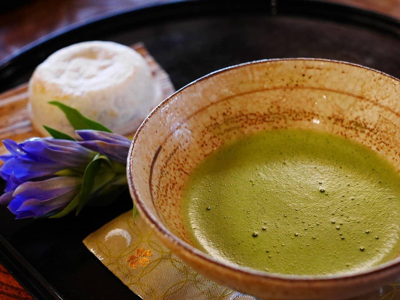 Tè matcha: potente antitumorale…ma in laboratorio