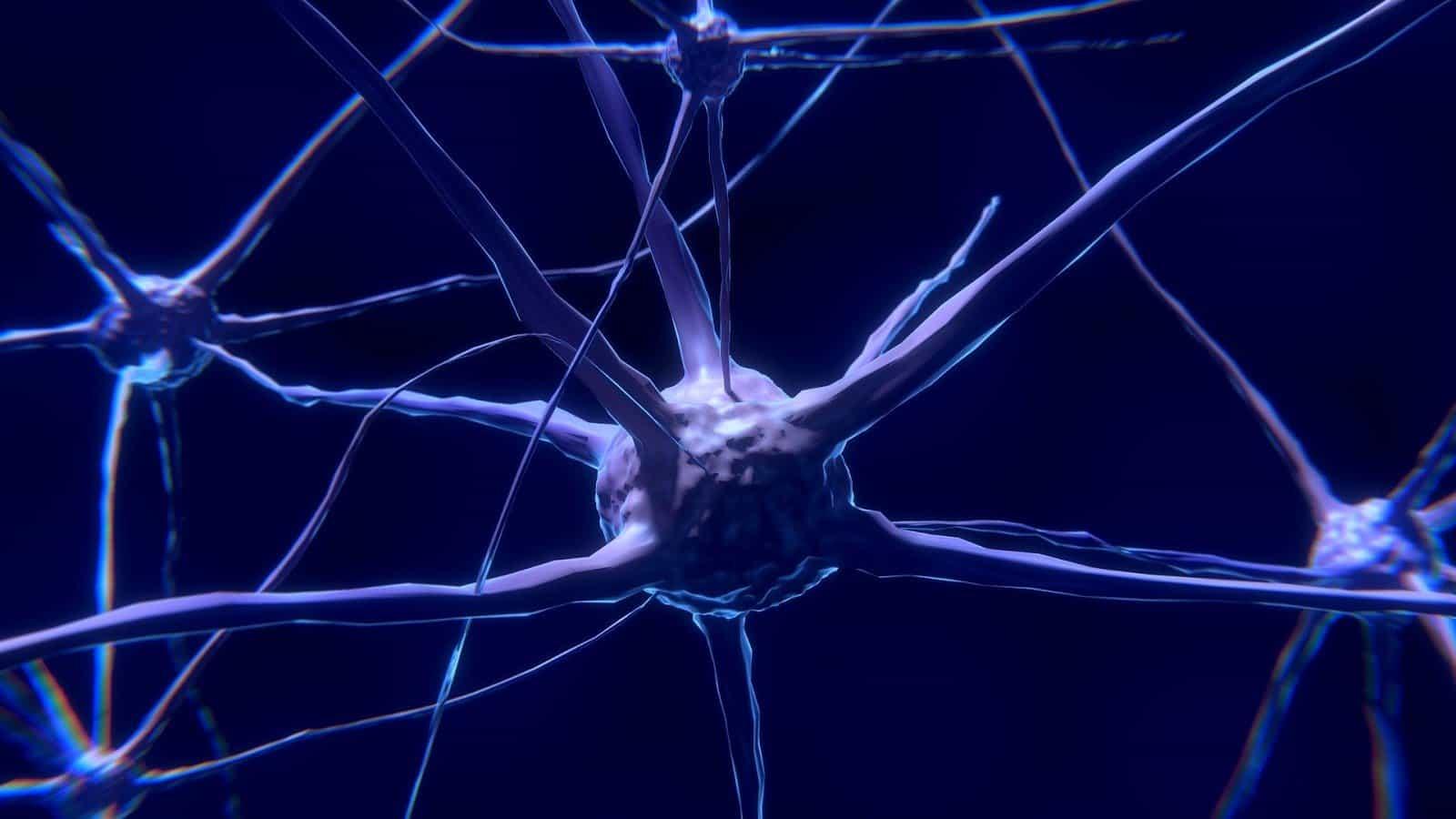 Studio italiano apre le porte alla cura di malattie del neurosviluppo