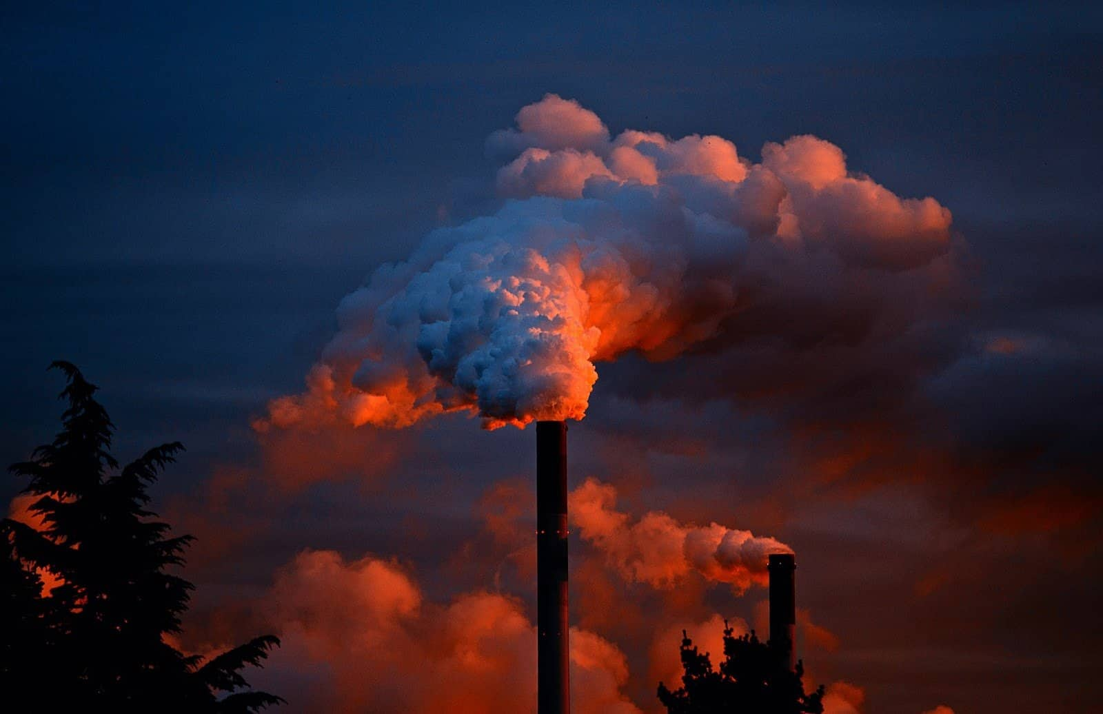 Salute e centrali a carbone: riflettori su Vado Ligure