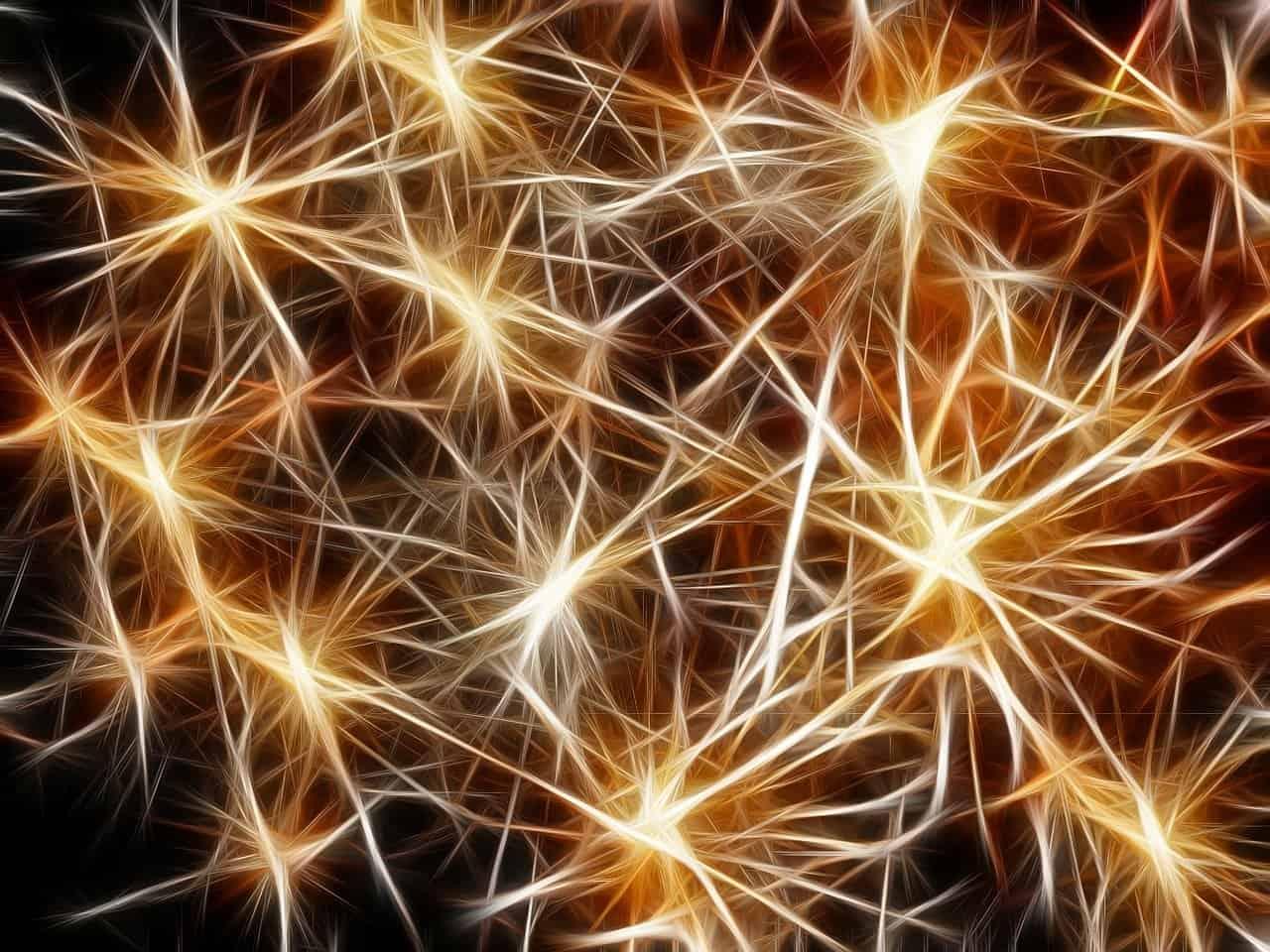 Scoperta una molecola in grado di frenare L'Alzheimer