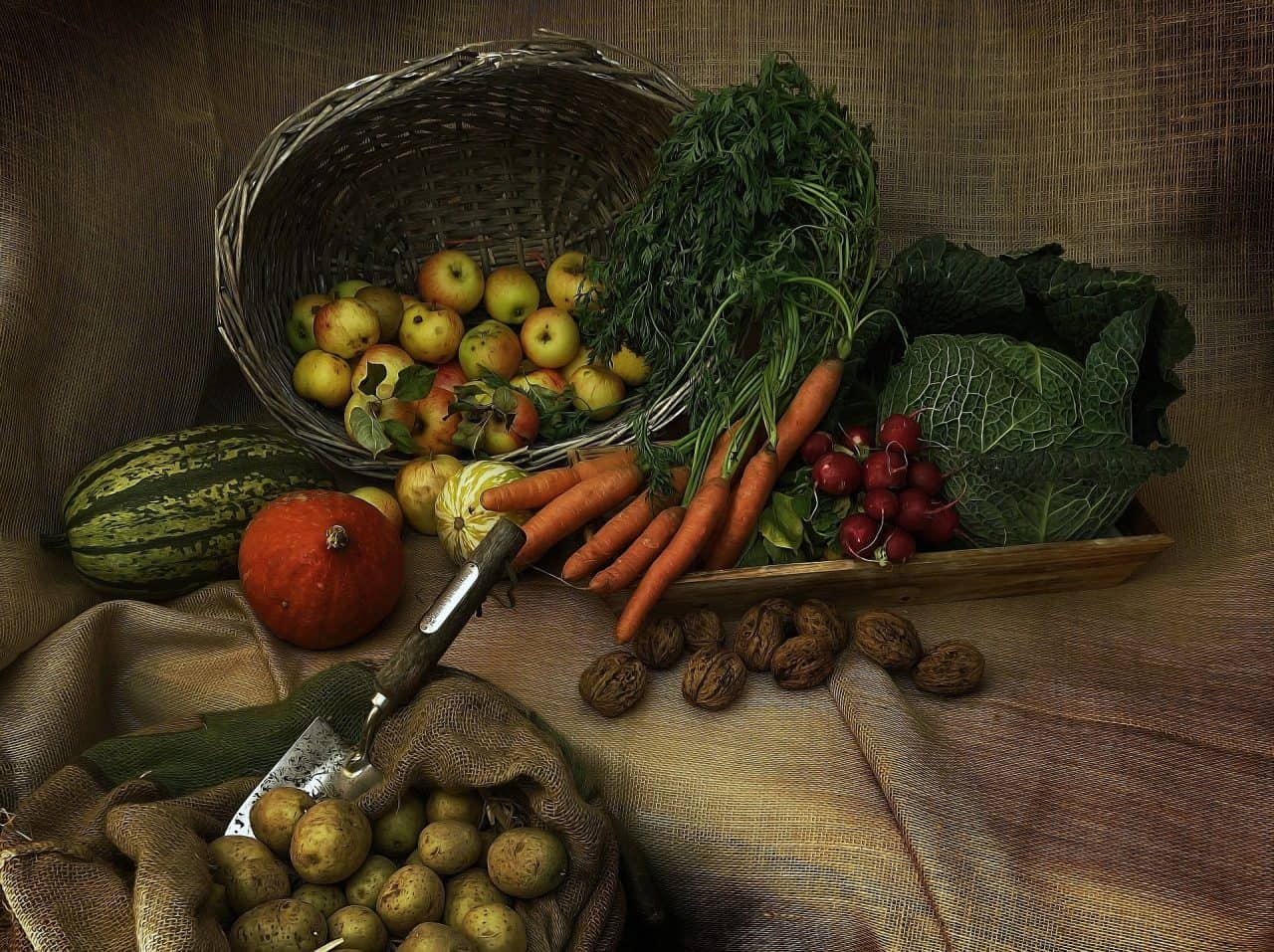 Dieta a base vegetale: è vantaggiosa?