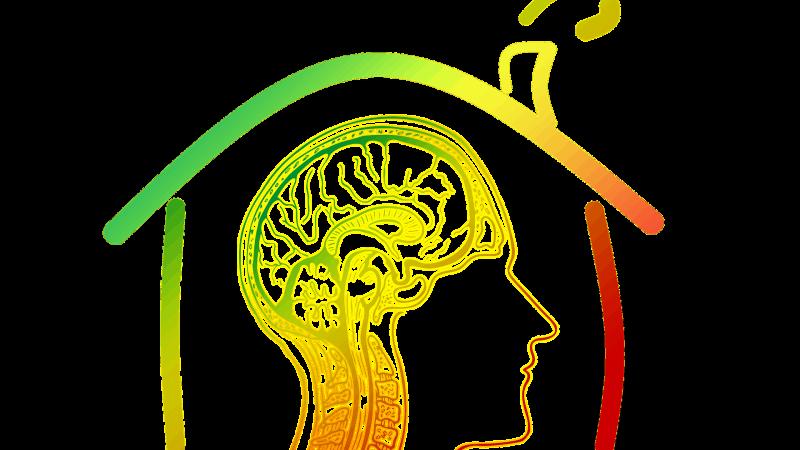 """""""Capire la mente"""": un libro per conoscere gli inquilini che la abitano"""