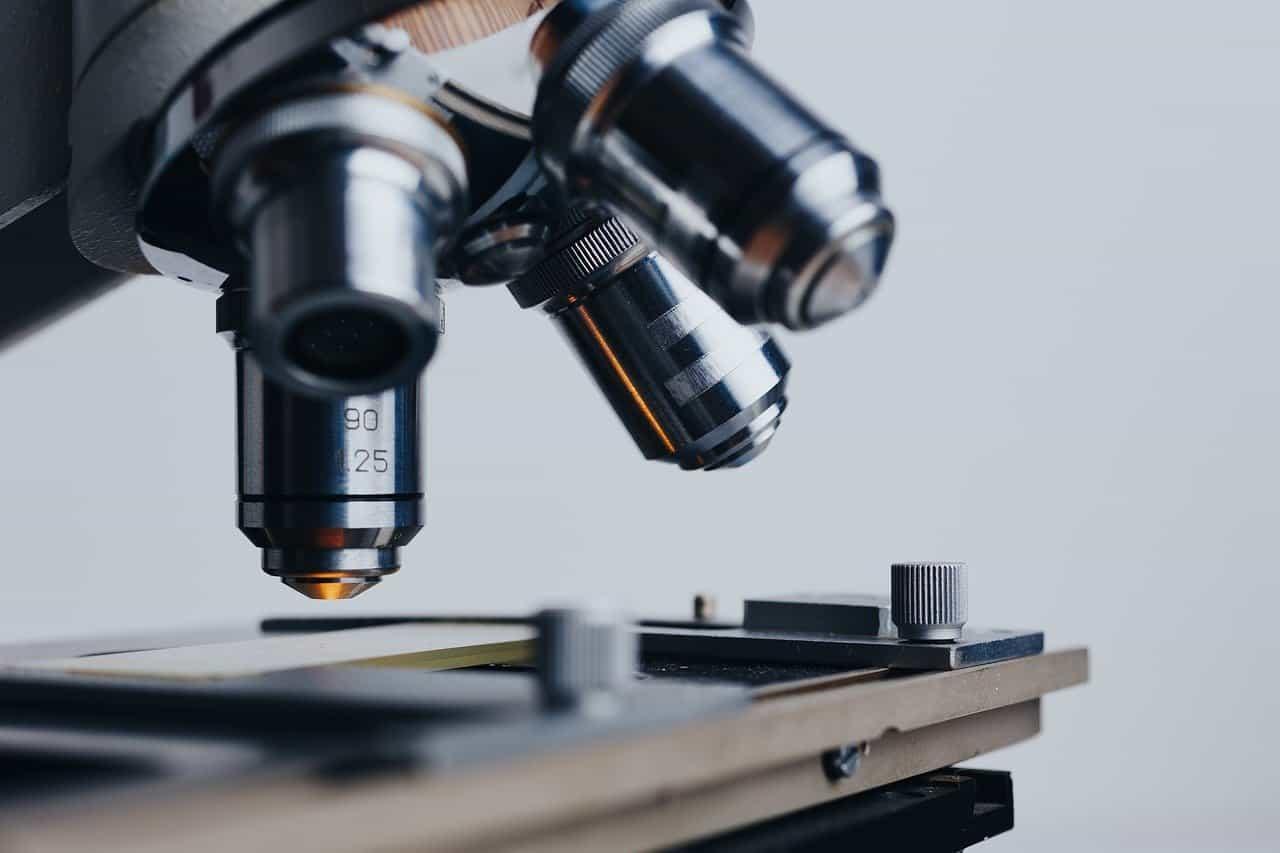 Scienza, salute e innovazione: una prospettiva di sostenibilità oltre la crisi