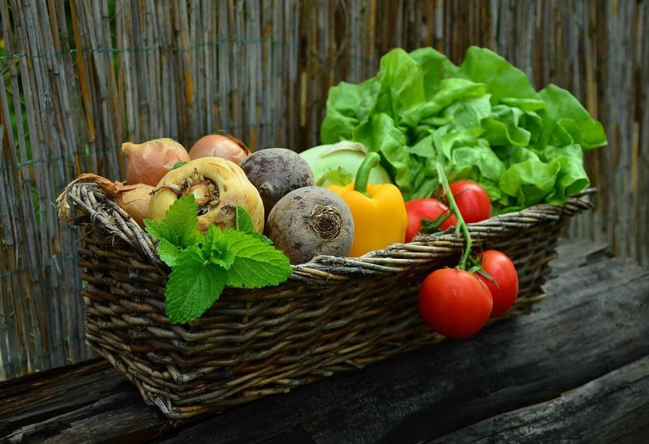 Covid: ASeS-Cia, al via donazioni alimentari in tutt'Italia per la Giornata internazionale della solidarietà