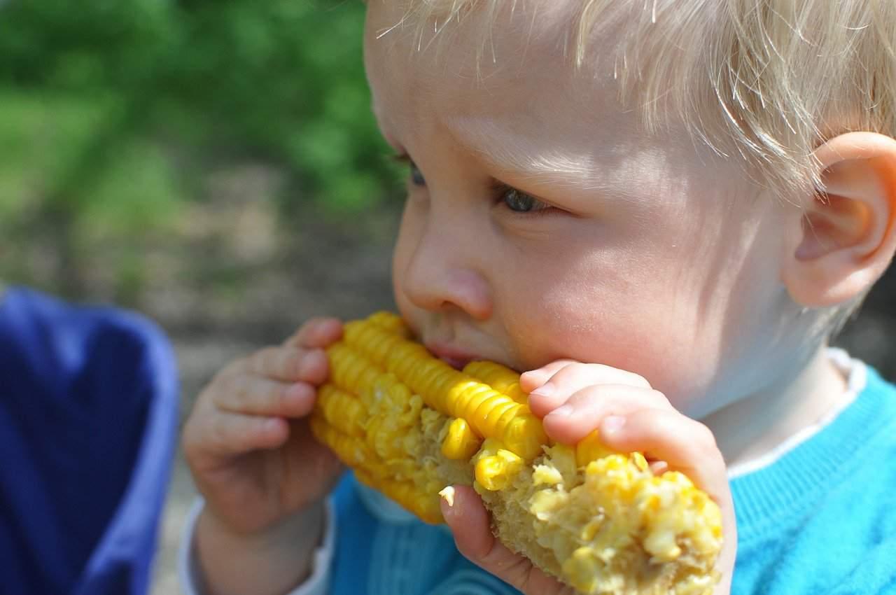 Dieta vegana addirittura pericolosa per i più piccoli? Lo afferma uno studio scientifico